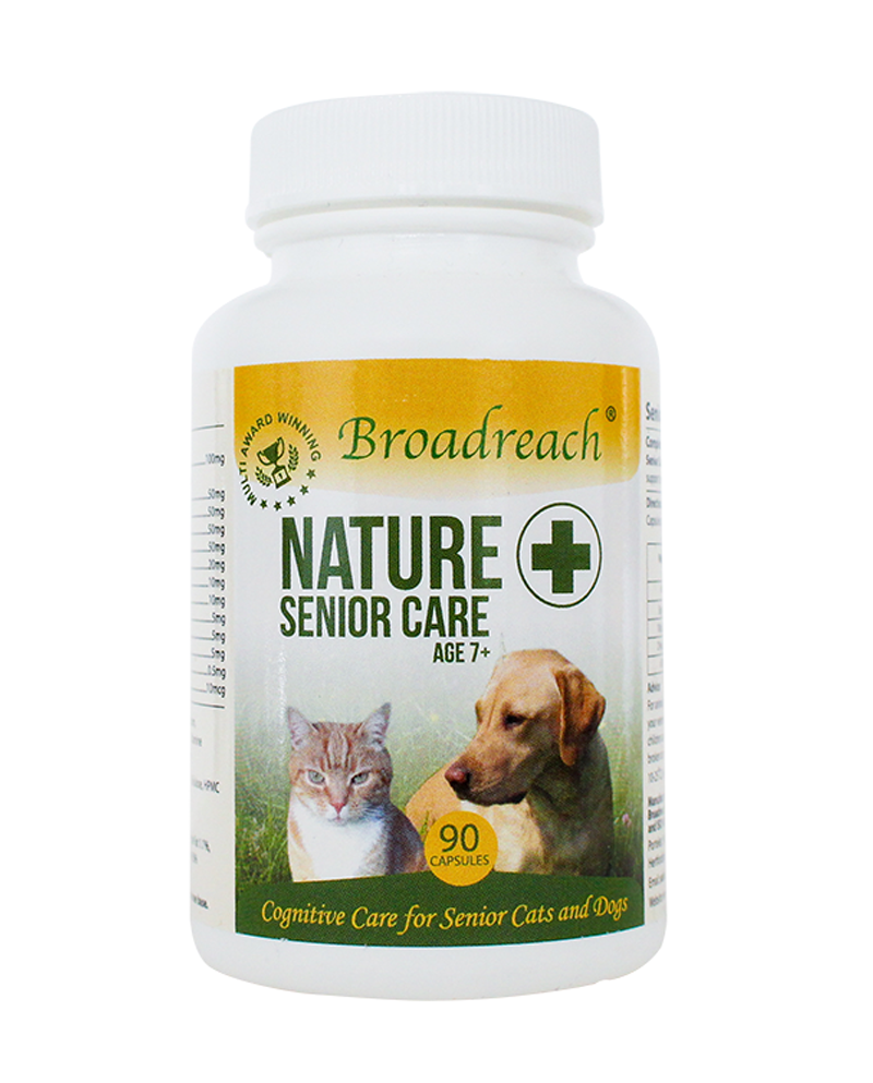 senior care 7+ Supplements For Older Cats & Dogs