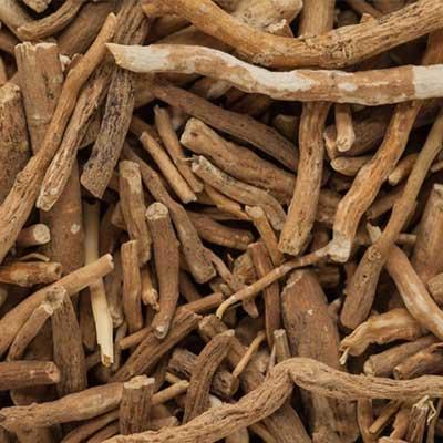 ashwagandha root ingredient