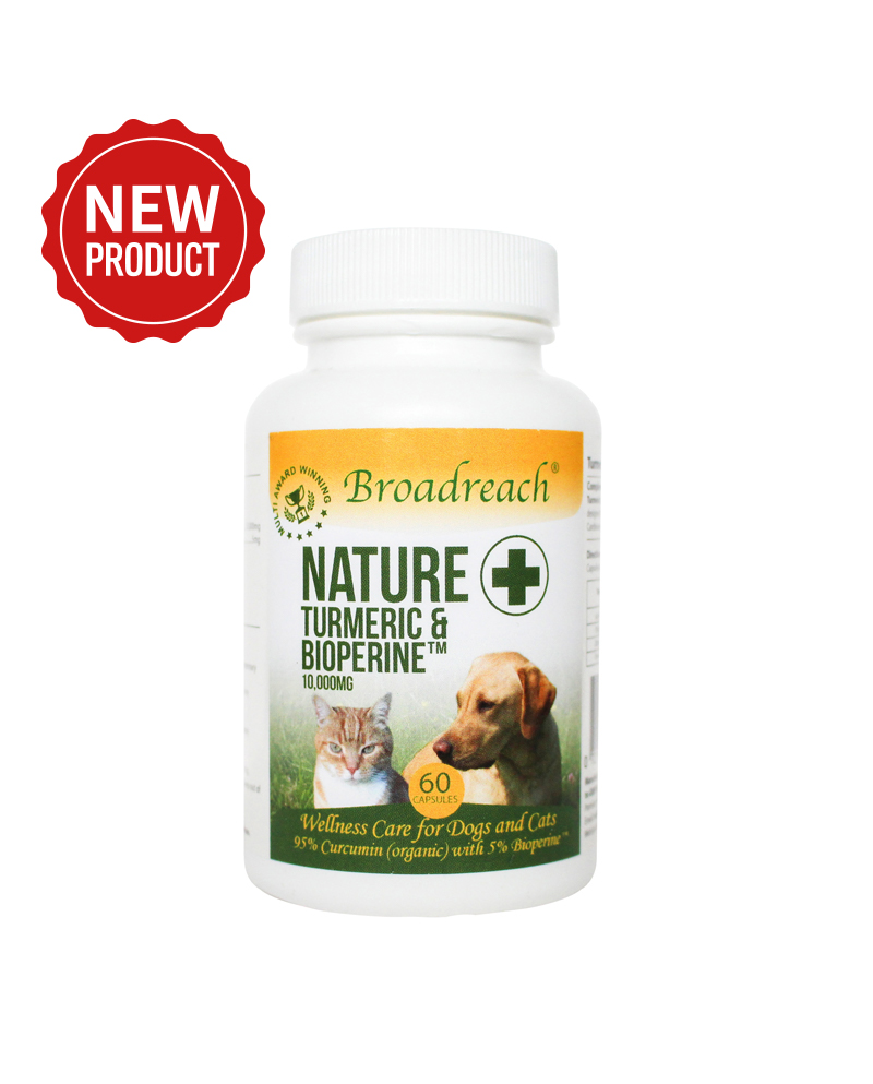 Organic Turmeric and Bioprene