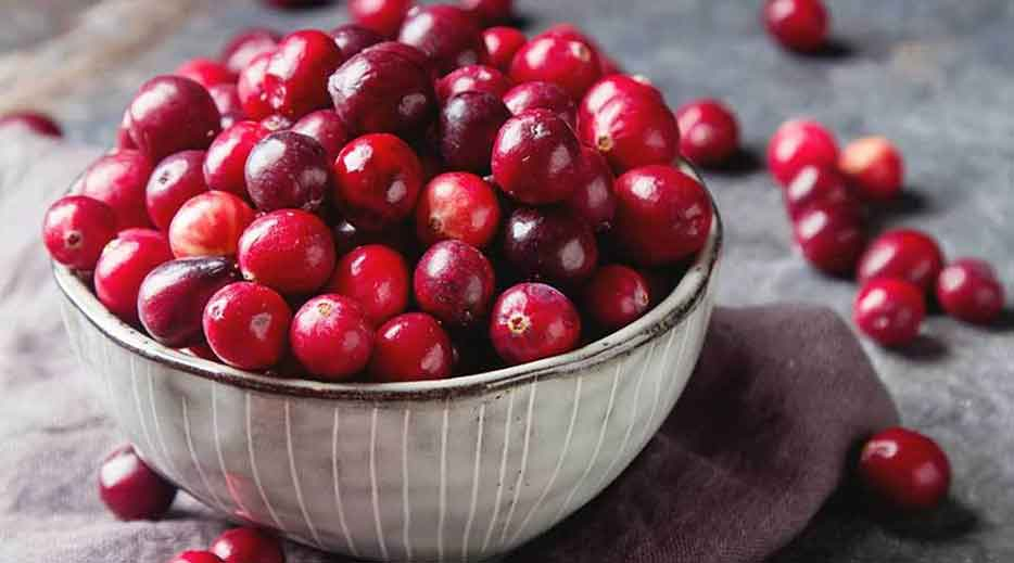 Urinary care ingredients cranberries