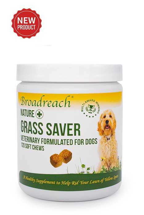 Grass saver for dogs