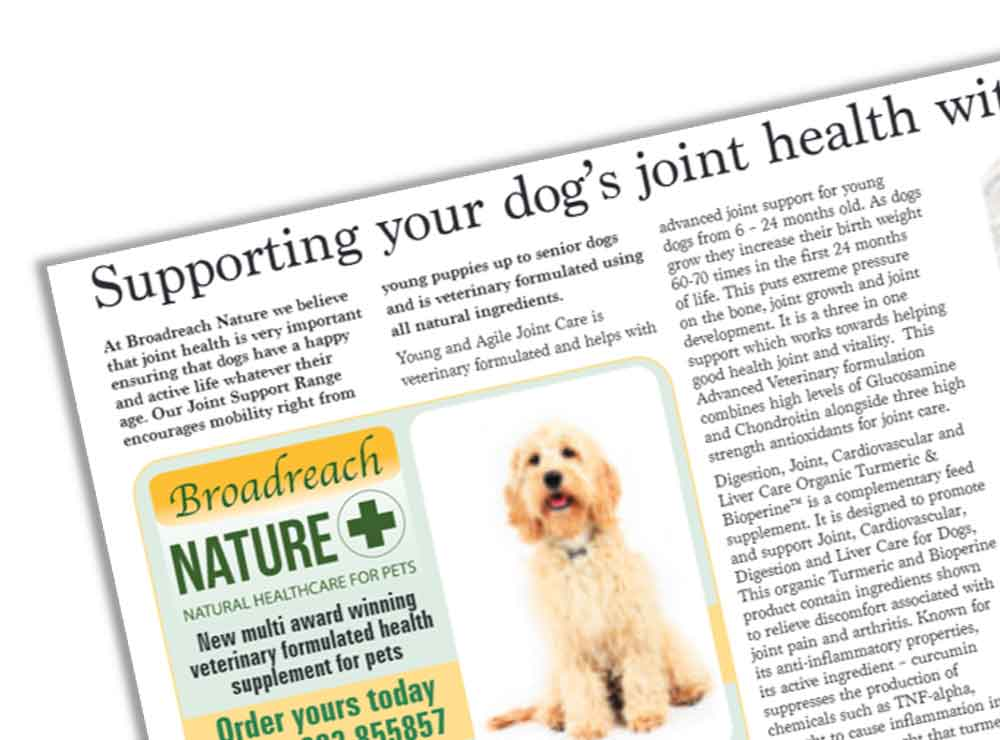 Natural pet supplements - Our dogs article