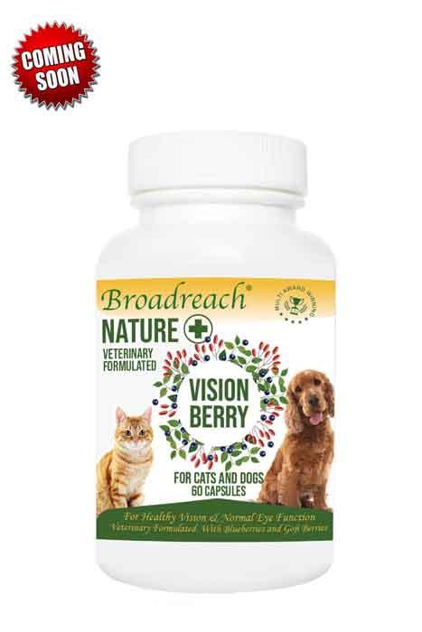 Vision berry capsules