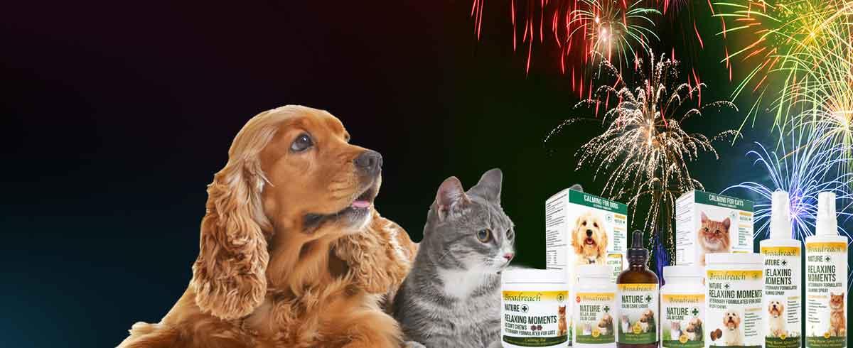 Calm Care Range fireworks
