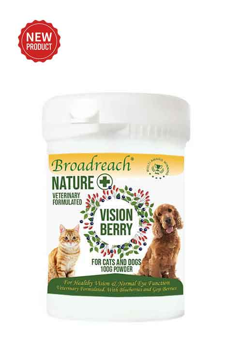 Vision Berry Powder