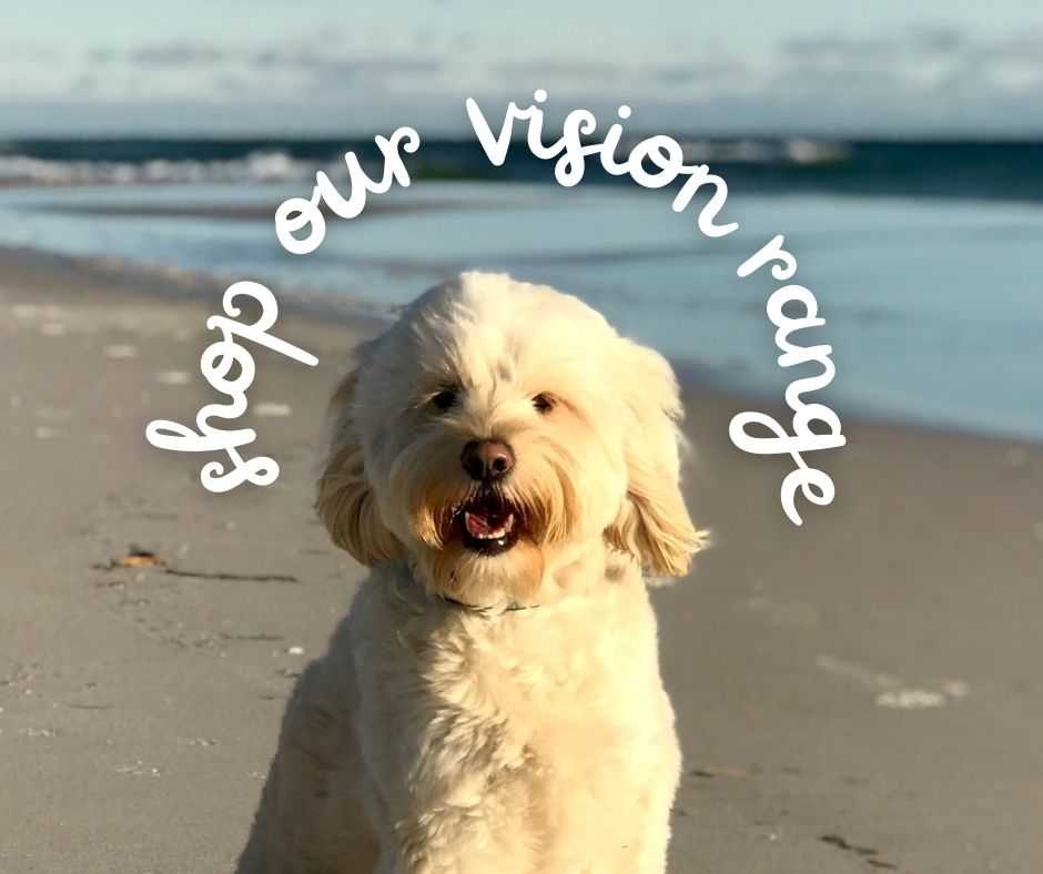 shop our vision range