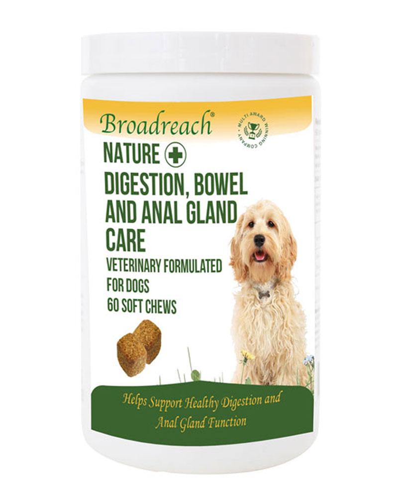 Digestion, bowel and anal gland care